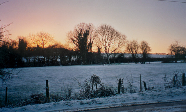 Snowy fields in Mapledurwell
