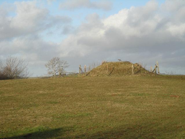 Mound near Ale Oak