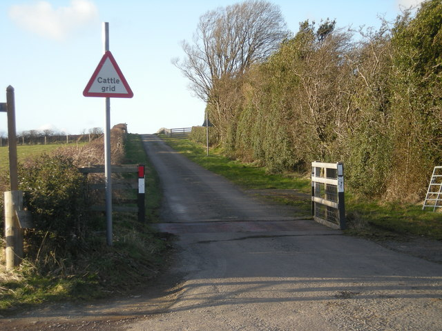 Cattle Grid on Folly Bank
