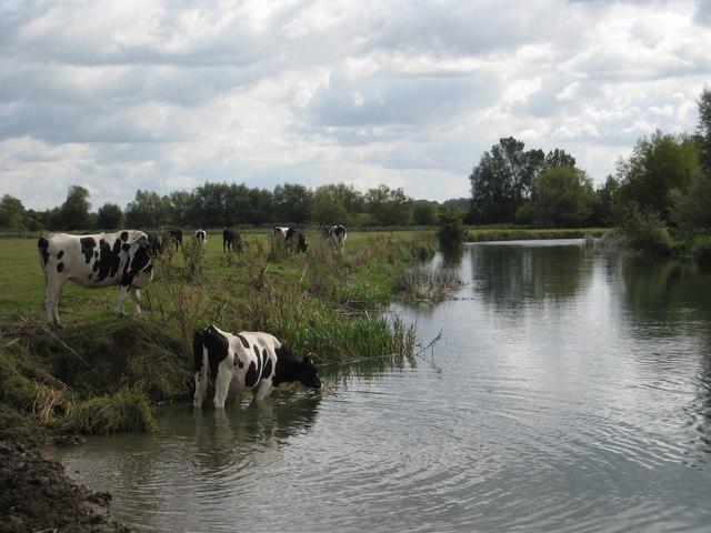 Thames near Buscot