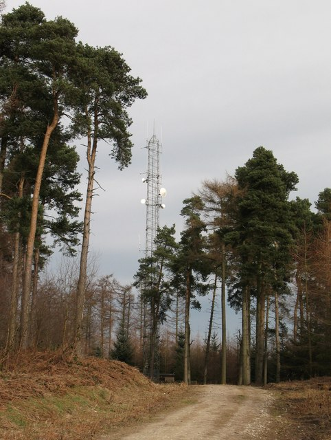 Telecommunications mast on Whinny Cross Hill