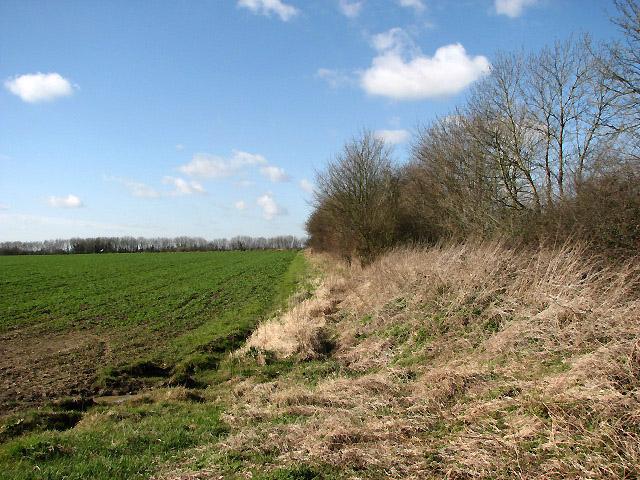 View west along field edge