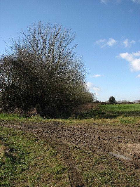 Muddy entrance into field