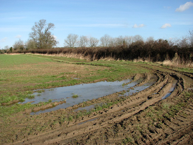 Muddy corner in field