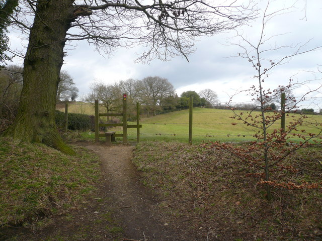 Footpath View near Stubbing