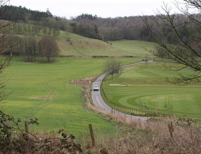 Road near Milton Abbey