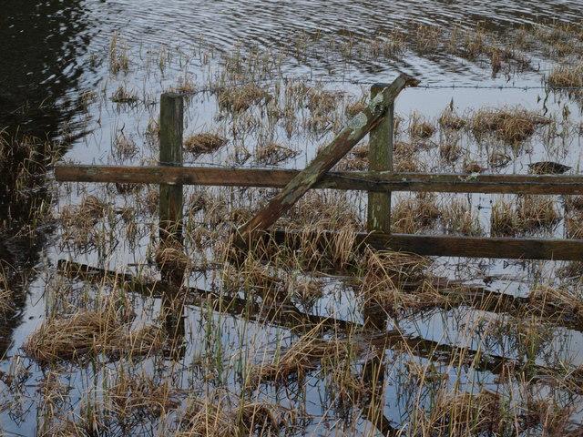 Fence, Knapps Loch
