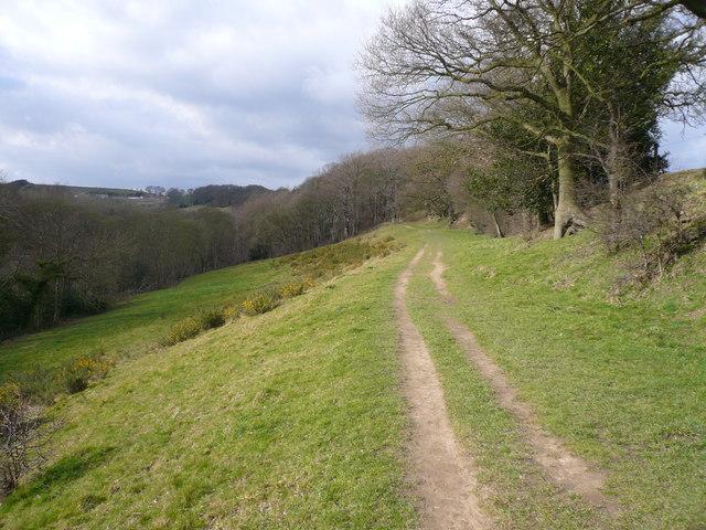 Footpath View from Watson Lane near Stubbing