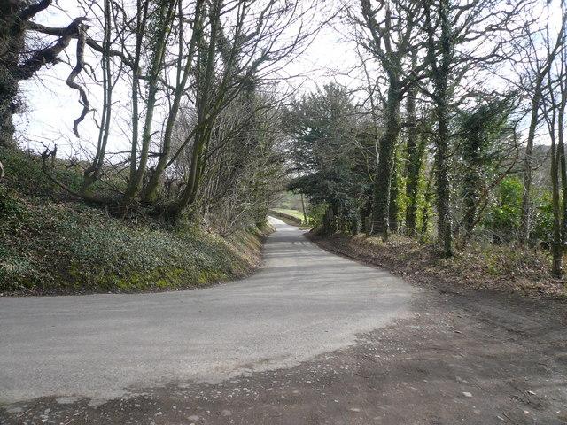 Watson Lane looking towards Pearce Lane