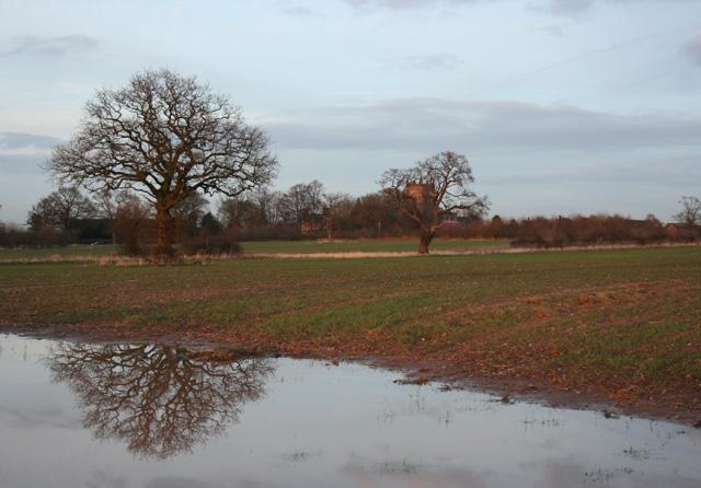 Reflections at dusk, near Acton