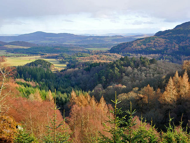 Upper Strathearn from  the track on Little Port Hill