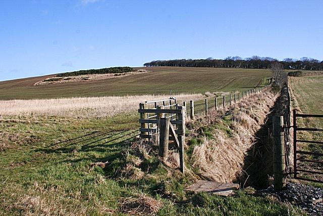 Hill of Maunderlea