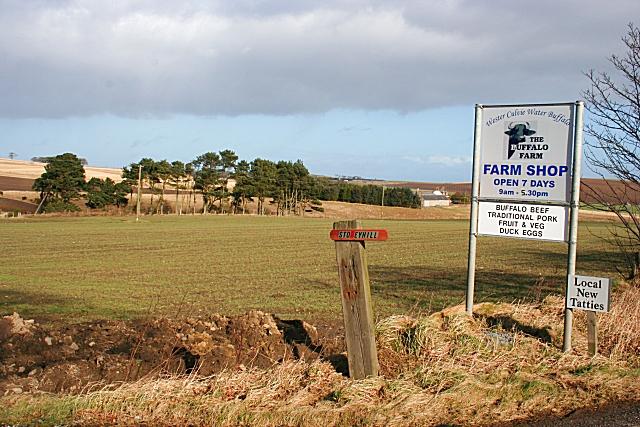 Stoneyhill Farm Shop Sign