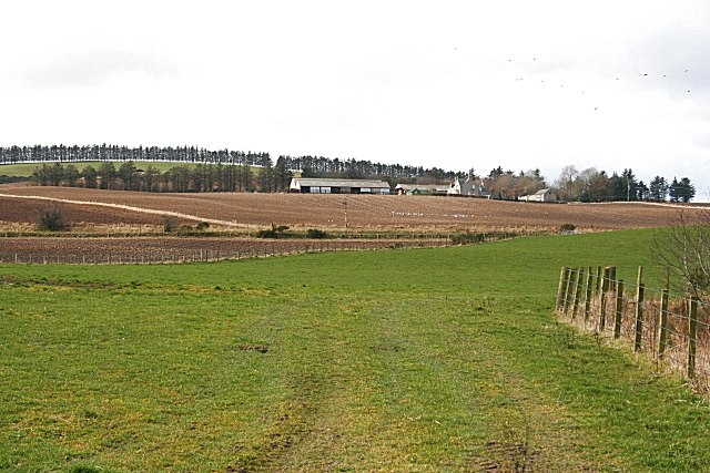 Looking towards Greenlaw