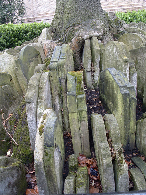 Gravestones at base of the Hardy Tree, St Pancras Old Church, London