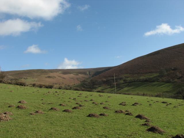 Hill view near Cregina