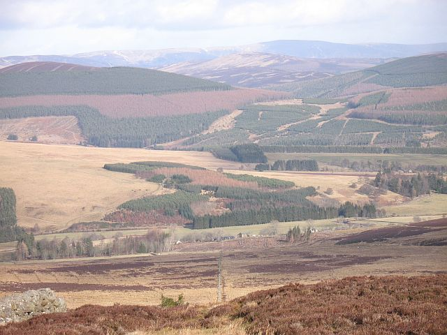 Lower slopes of Gallow Hill, Glen Isla