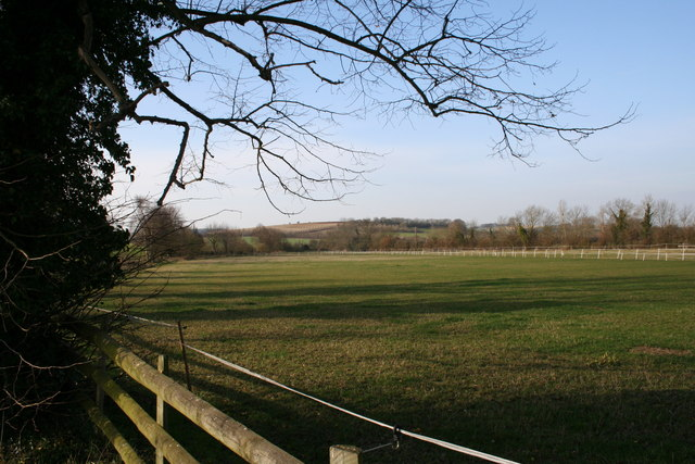 Looking to Lollingdon Hill