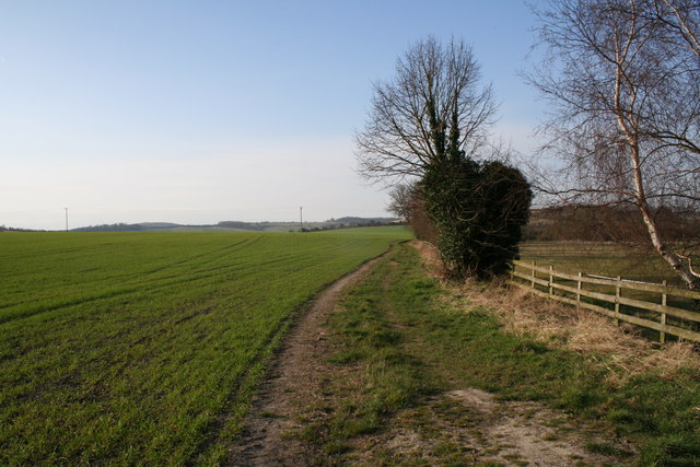 Towards Lollingdon