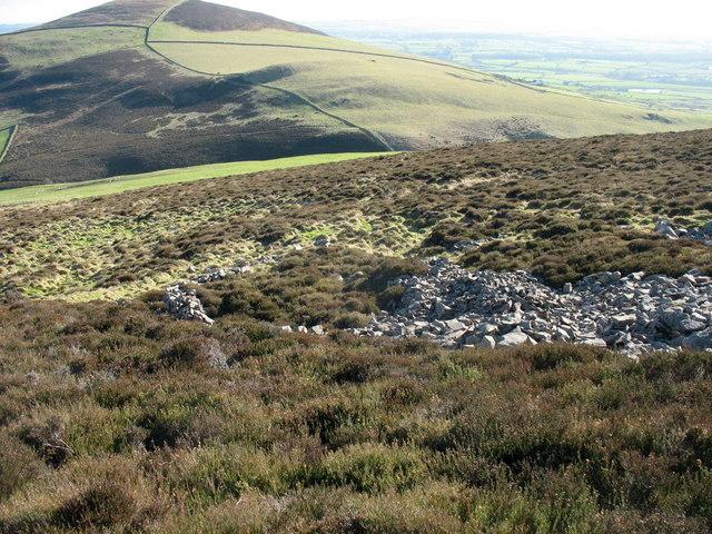A ruined sheepfold below Caergribin