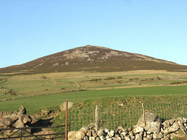Improved grasslands at Carnguwch Bach