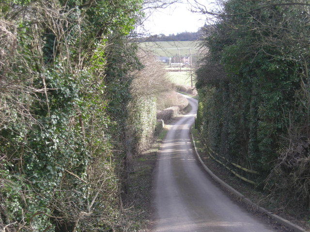 Lane to Bradley Farm