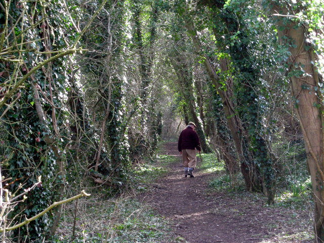 The Ghost of Wainwright on the Jack Mytton Way
