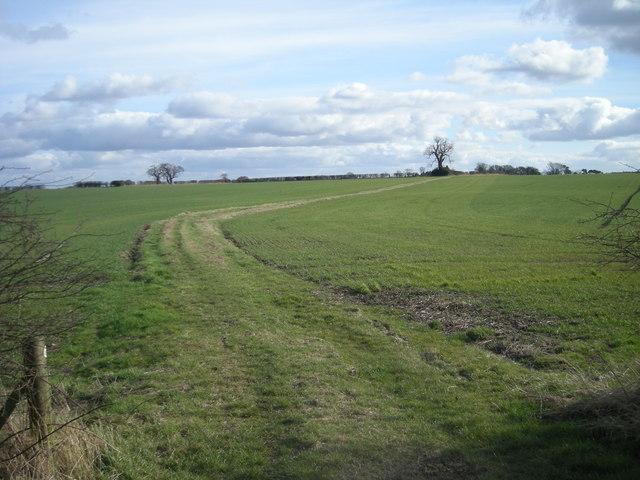 The Jack Mytton Way (south)