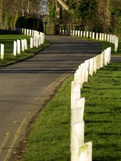 Ivy Lane Fence Posts