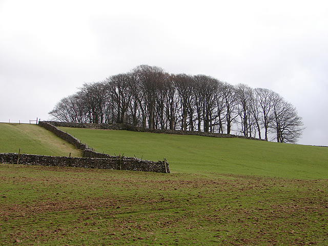 Beside the Pennine Way, to the east of Horton