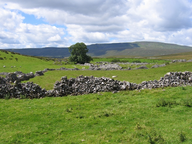 View towards Whernside from Thorns