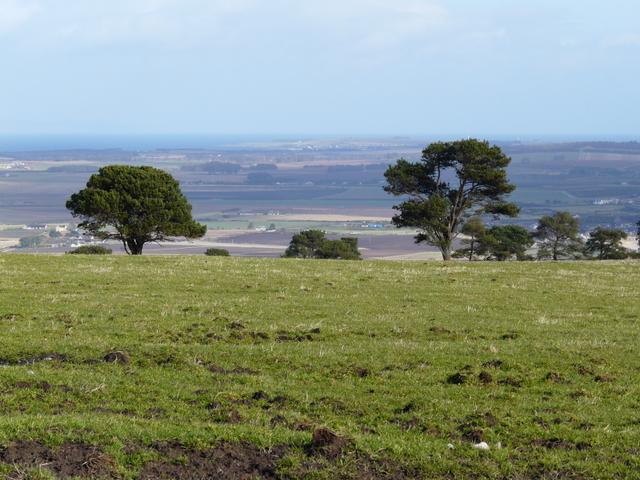 Nigg Hill, looking towards Dornoch