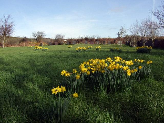 Cemetery, Trewyddel/ Moylgrove