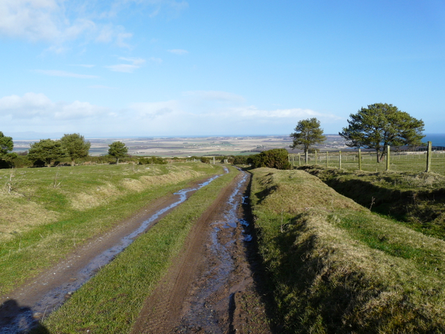 Farm track, Nigg Hill