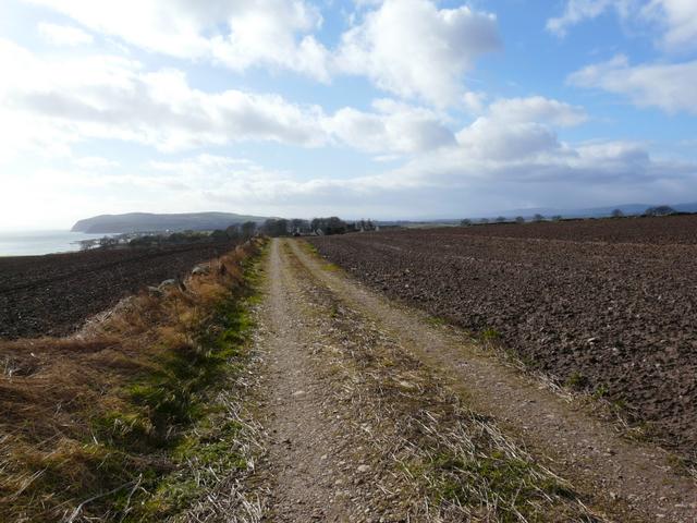 Farm track and Nigg Hill