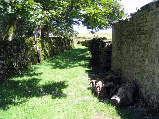 Old Lane at Thorns
