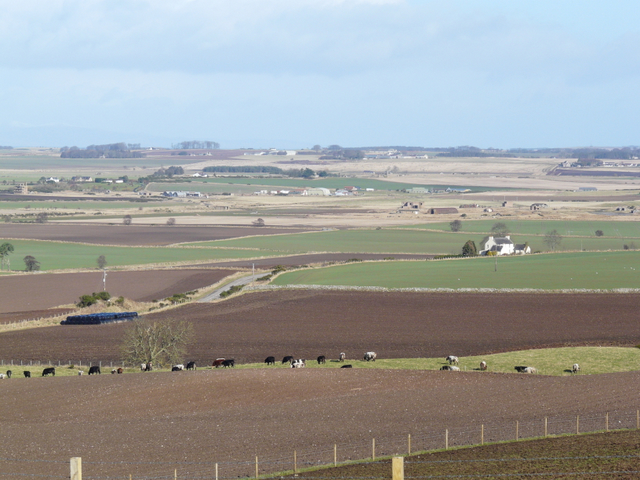 Farmland ,Wester Rarichie
