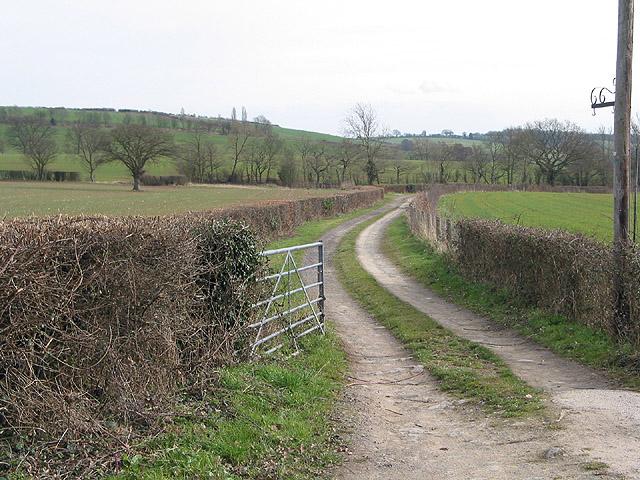 Farm entrance, SW of Lyne Down