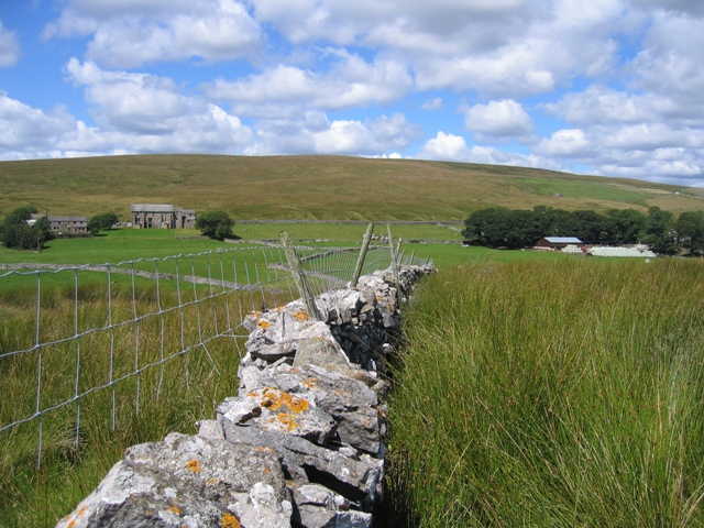 Stone wall towards Thorn Gill