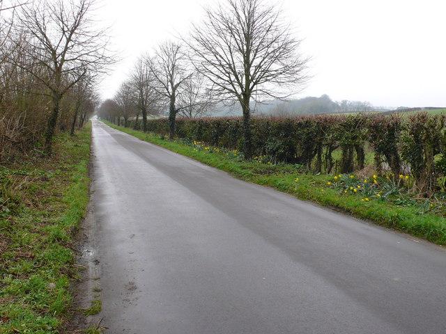Road between the Bockhamptons