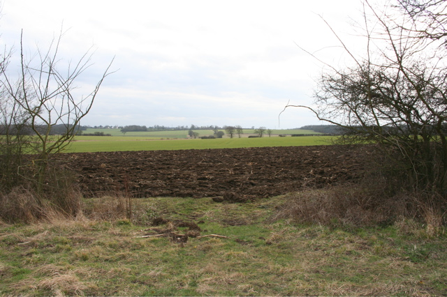 Fields from Up End Track, Langley
