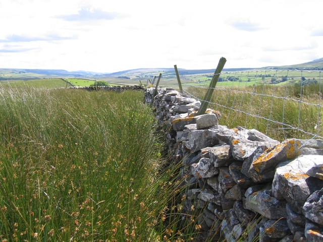 Stone wall above Thorns