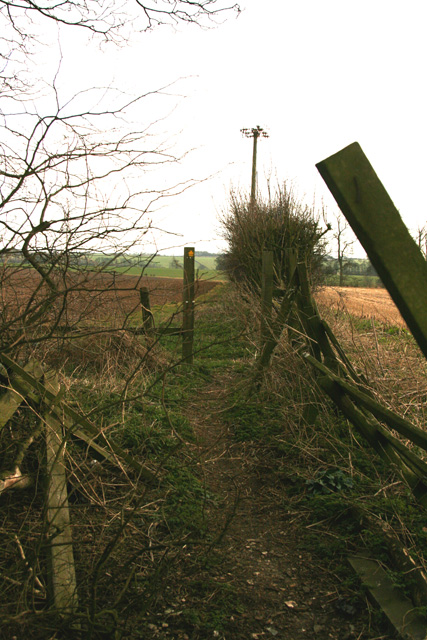 Path to Low Hunsley Plantation
