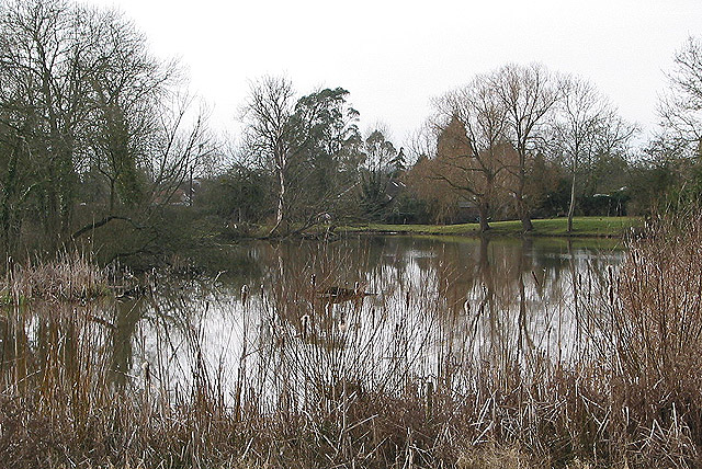 Pond at Pendock