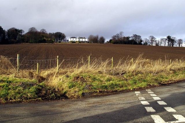 Fields near Bonsyde
