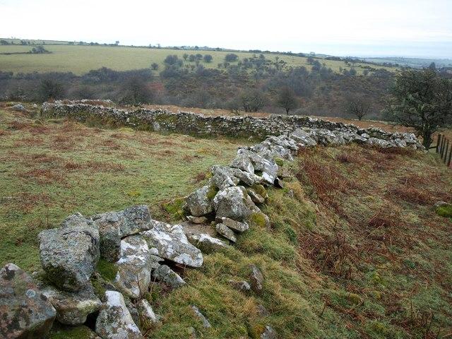 Twisting wall below Tregarrick Tor