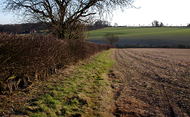 Footpath to Welton-le-Wold