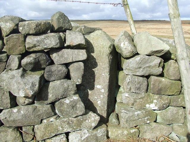 Tranmire Stone (Boundary Stone)
