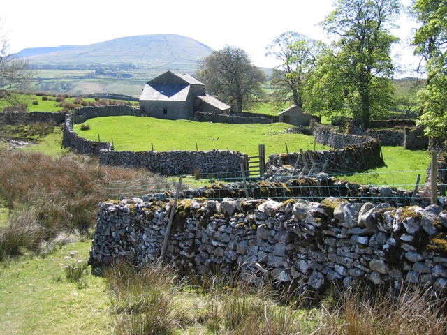 The old barn and walls at Thorns
