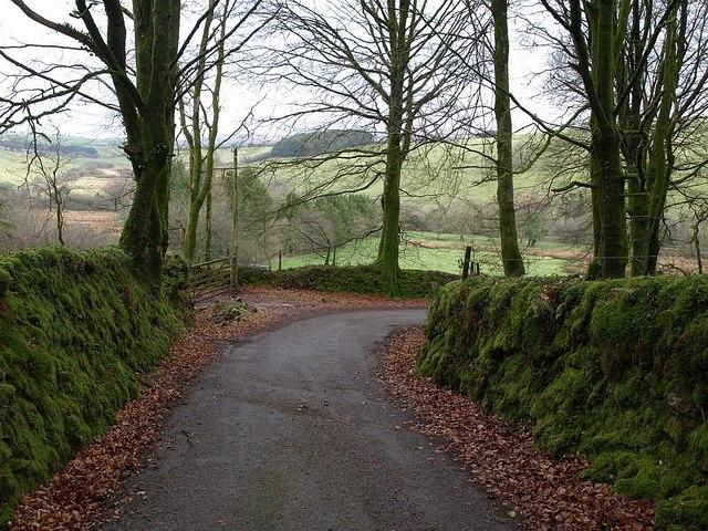 Farm lane near Lamelgate